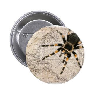 map spider 6 cm round badge