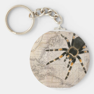map spider basic round button key ring