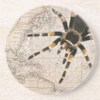 map spider beverage coaster