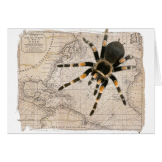 map spider card