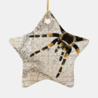 map spider ceramic star decoration