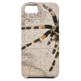map spider iPhone 5 case