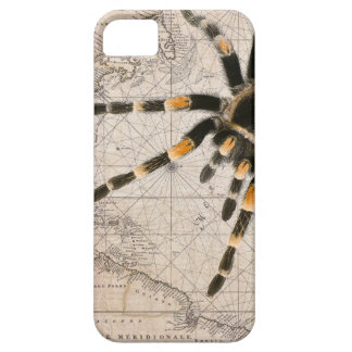 map spider iPhone 5 covers