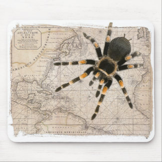 map spider mouse pad