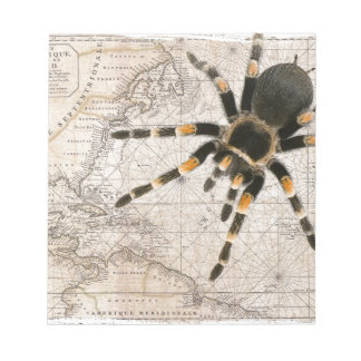 map spider notepad