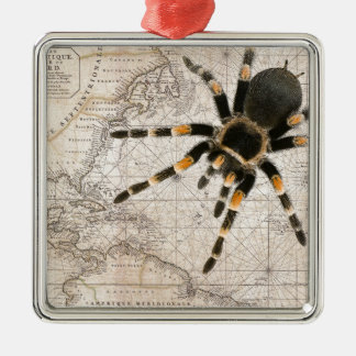map spider Silver-Colored square decoration