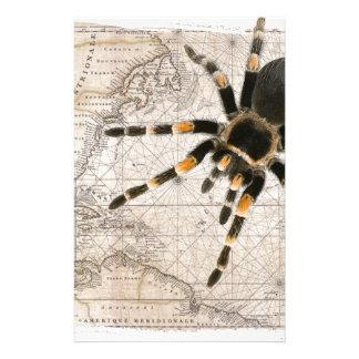map spider stationery