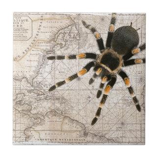 map spider tile