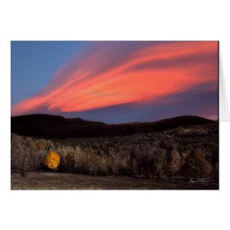 Maple Ablaze at Sunset Card