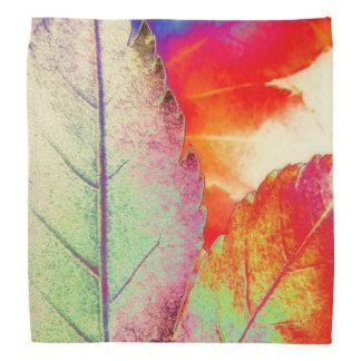 Maple Abstract Bandana
