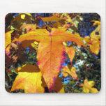 Maple Autumn Leaves Mouse Mats
