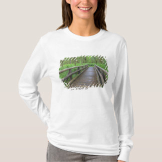 Maple Glade trail wooden bridge, ferns and T-Shirt