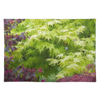 maple in summer place mats