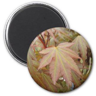 Maple leaf 6 cm round magnet