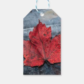 Maple leaf on ice gift tags