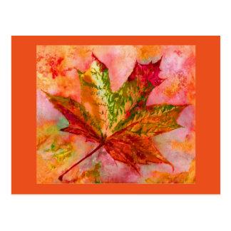 Maple  Leaf. Postcard