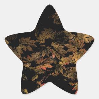 Maple Leaf Star Sticker