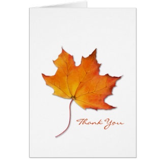 Maple Leaf Thank You Note Card