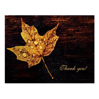 Maple leaf with rain drops on wood texture postcard