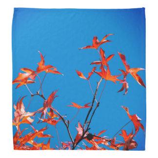 Maple Leaves Bandana
