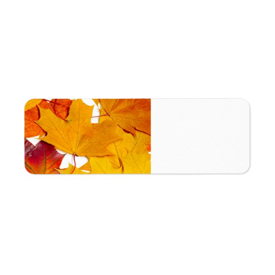 Maple leaves return address label