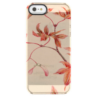 Maple leaves (Vintage Japanese print) Clear iPhone SE/5/5s Case