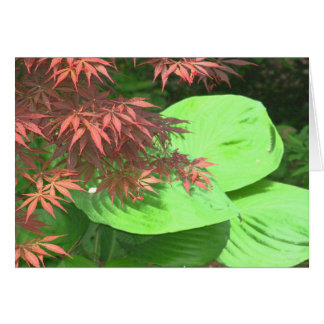 Maple N' Hosta Note Cards