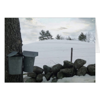 Maple Syrup Buckets NH 2013 Greeting Card