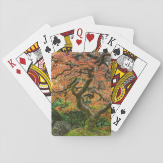 Maple Tree At The Japanese Gardens In Autumn Card Deck