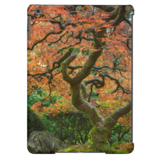 Maple Tree At The Japanese Gardens In Autumn Case For iPad Air