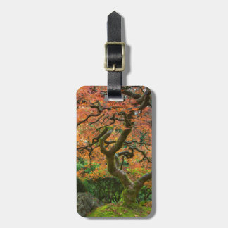 Maple Tree At The Japanese Gardens In Autumn Travel Bag Tags