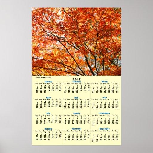 Maple tree foliage posters
