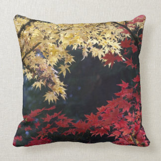 Maple trees in autumn color throw pillow