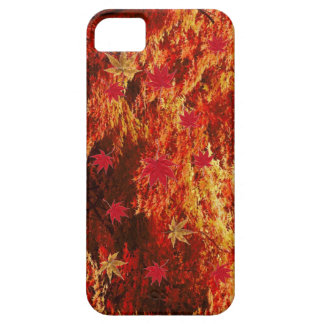 maples japanese iPhone 5 cover