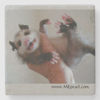 Marble Coaster with Opossum