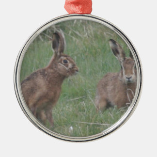 March Hares Silver-Colored Round Decoration