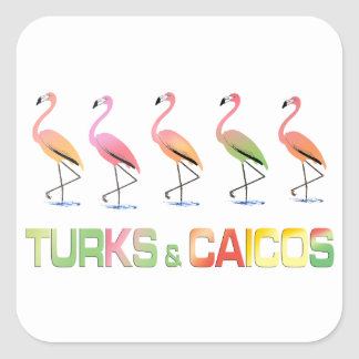 March of the Tropical Flamingos TURKS & CAICOS Square Sticker
