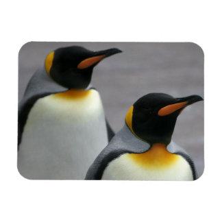 Marching Penguins Flexible Magnet Flexible Magnet