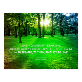 Marcus Aurelius Life Stoic Privilege quote Life Postcard