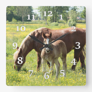 Mare And Colt Clocks