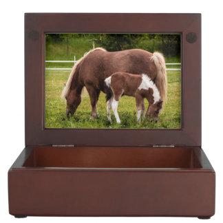 Mare And Colt Keepsake Box