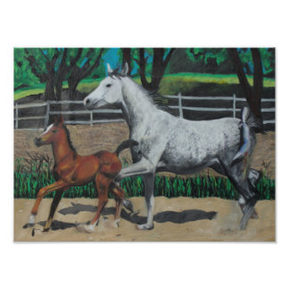 Mare And Colt Art Photo