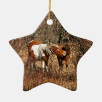 Mare and Foal Ceramic Star Decoration