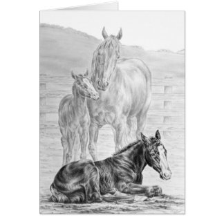 Mare and Foal Horse Drawing by Kelli Swan Greeting Card