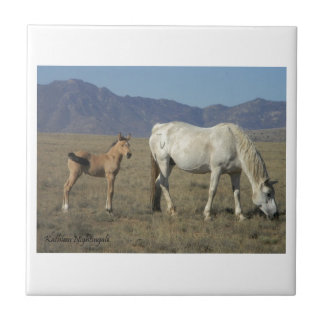Mare and Foal (Horses) Small Square Tile
