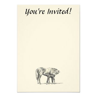 Mare and Foal 5x7 Paper Invitation Card