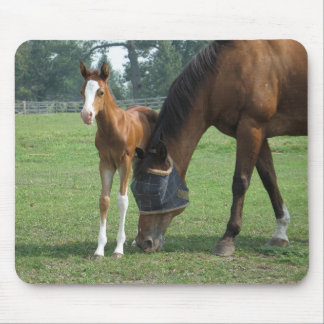Mare and Foal Mouse Pads