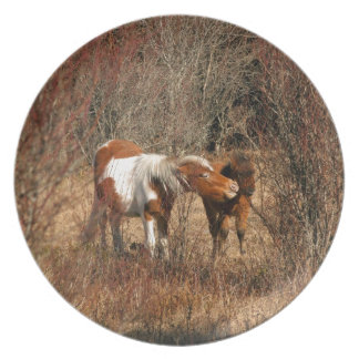 Mare and Foal Plates