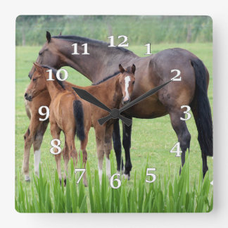 Mare And Two Colts Clocks