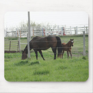 Mare & Foal Mouse Pad